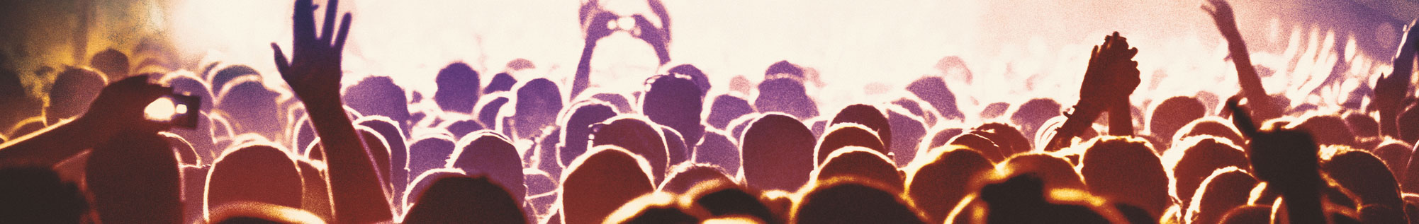 entertainment law - a crowd at a concert